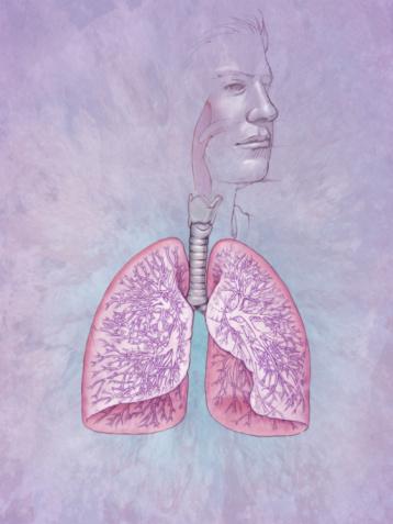 Causes of Bronchitis