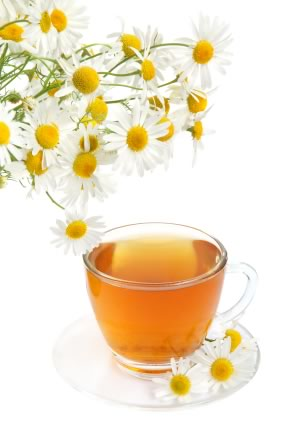 Chamomile Herbal Remedies