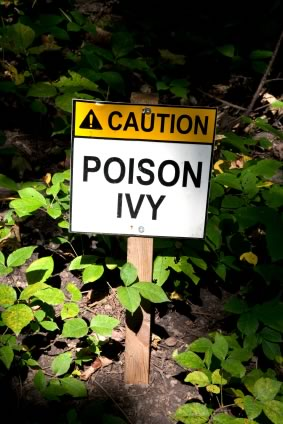 Natural Poison Ivy Cures